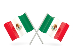 Reverse Phone Lookup for Mexico | NumLookup